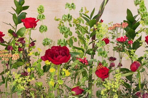 Guildford-Cathedral-Flower-Gala-Flowerona-6