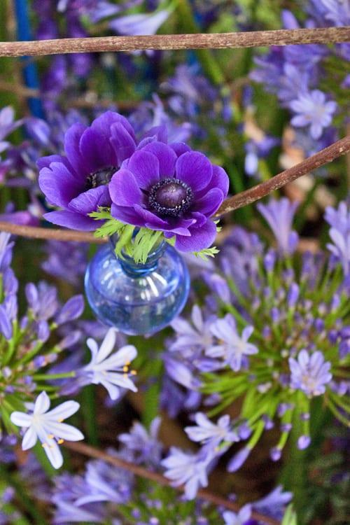 Guildford-Cathedral-Flower-Gala-Paula-Pryke-Flowerona-14