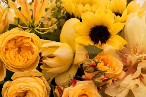 Guildford-Cathedral-Flower-Gala-Robbie-Honey-Demo-Flowerona-10