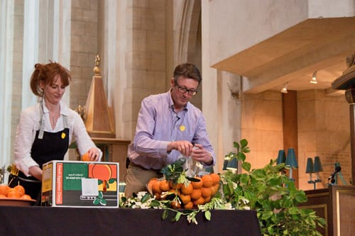 Guildford-Cathedral-Flower-Gala-Shane-Connolly-Demo-Flowerona-7
