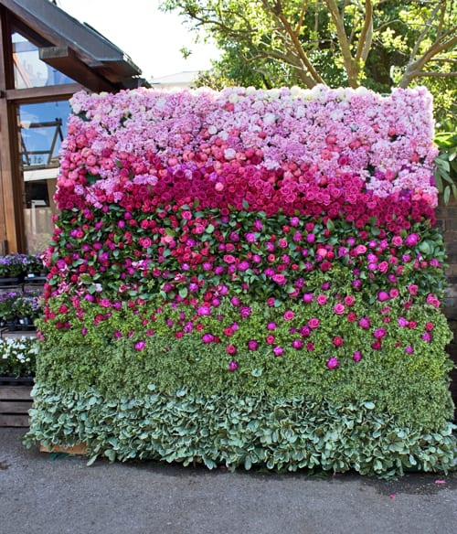 Beautiful Floral Backdrop by Rebecca Louise Law at Clifton Nurseries in London