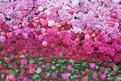 Rebecca-Louise-Law-Floral-Installation-Clifton-Nurseries-Flowerona-5