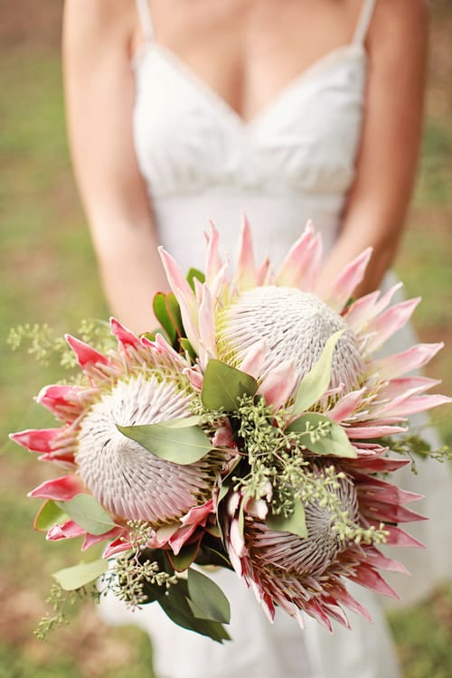 Wedding Flowers Inspiration : The King Protea
