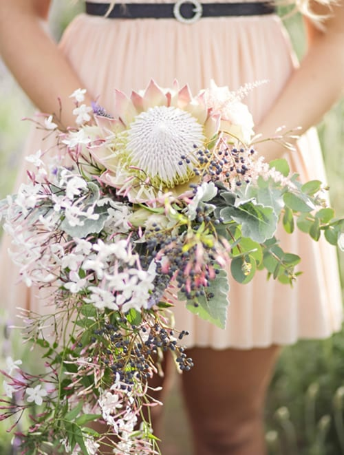 King-Protea-Bridal-Bouquet-Life-in-Still-Photography