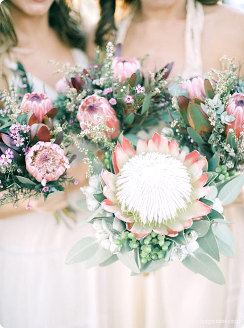 Wedding flowers inspiration the king protea flowerona for King protea flower arrangements
