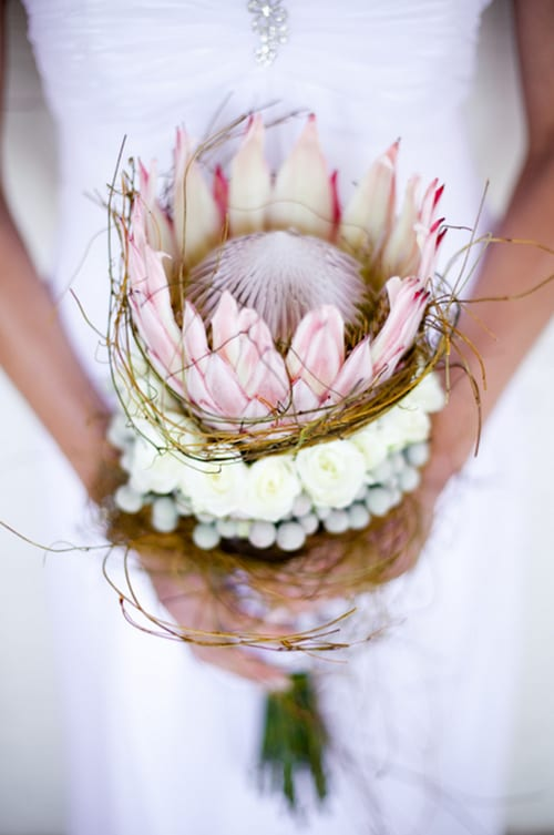 King-Protea-Bridal-Bouquet-SouthBound-Bride