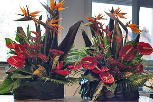 LeSoCo-Floristry-Demonstration-Flowerona
