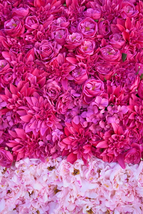 RHS-Hampton-Court-Palace-Flower-Show-2013-Hen-House-Nikki-Tibbles-Flowerona-3