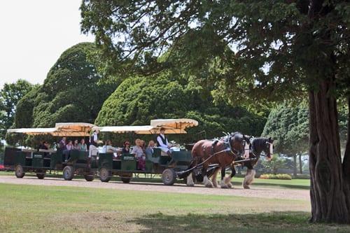 Hampton-Court-Palace-Gardens-Flowerona-13
