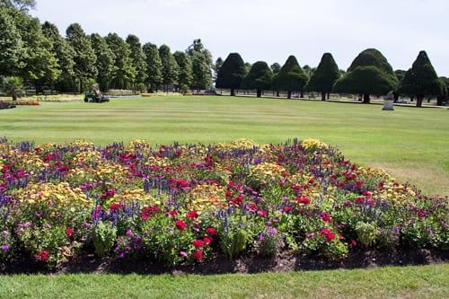 Hampton-Court-Palace-Gardens-Flowerona-18