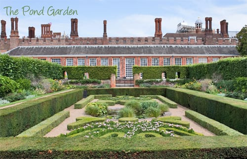 Hampton-Court-Palace-Gardens-Flowerona-9a