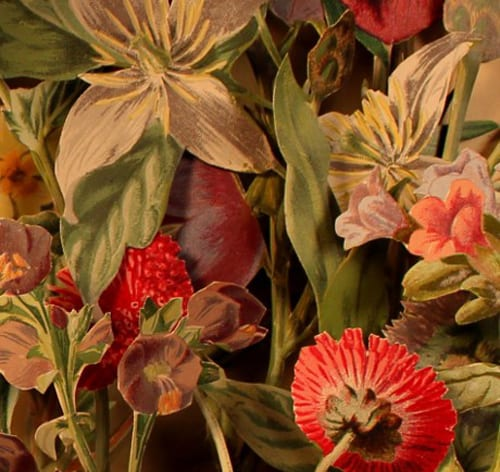 Kerry-Miller-flowers_detail_460_940