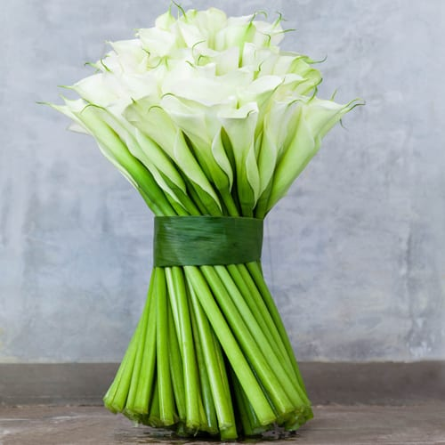 McQueens Calla Lily Hand Tied Bouquet