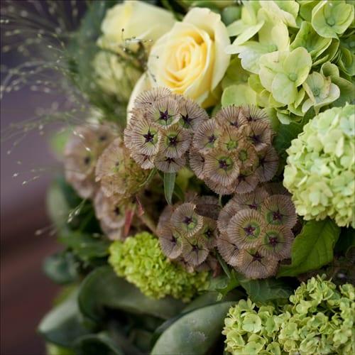 Eddie-Zaratsian-Custom-Florals-and-Lifetyle-Book-9