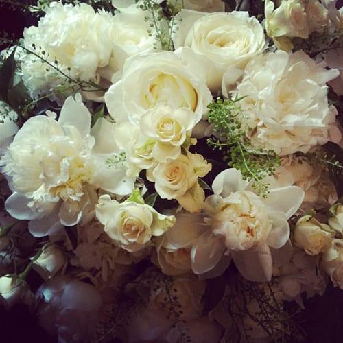 Euphoric-Flowers-1
