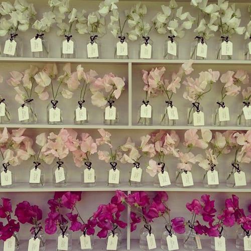 FairyNuff-Flowers-1