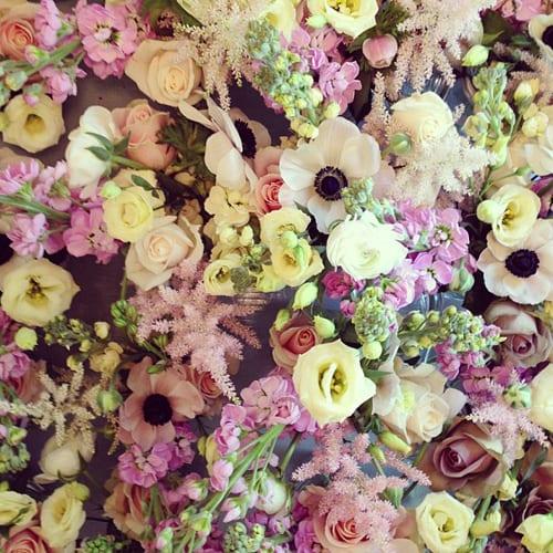 FairyNuff-Flowers-2