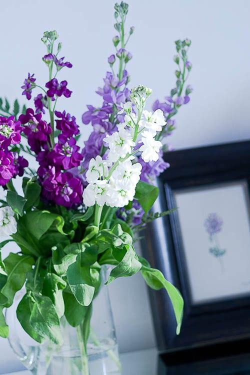 Flowerona-10-Katie-Spicer-Photography