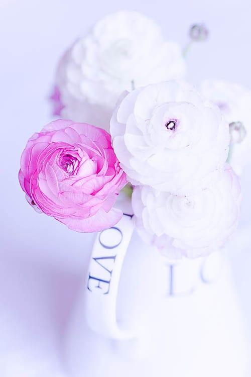 Flowerona-15-Katie-Spicer-Photography