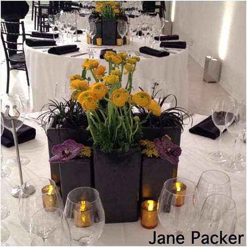 Jane-Packer-3