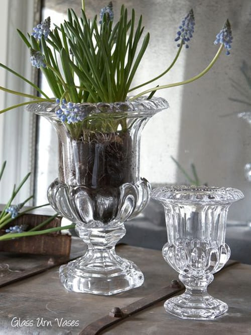 Six small vases from Nordic House…perfect for simple flower arranging in your home