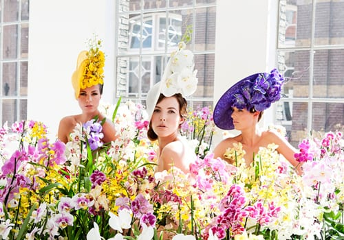 Philip-Treacy-Orchid-Hats