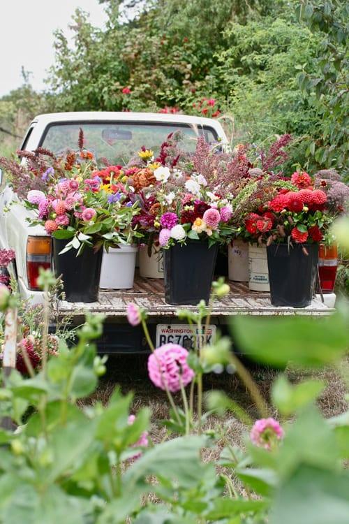 Floret Flower Farm Petals ink