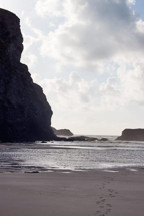 Cornwall-Holiday-Flowerona