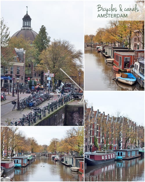 Amsterdam-Bicycles-&-Canals-Flowerona