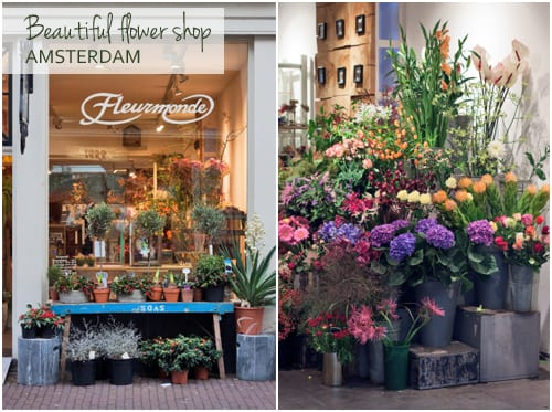 Flowerona Reflects: fairs & flower heaven