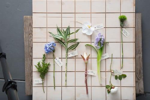 Flower-specimens-Bloom-College