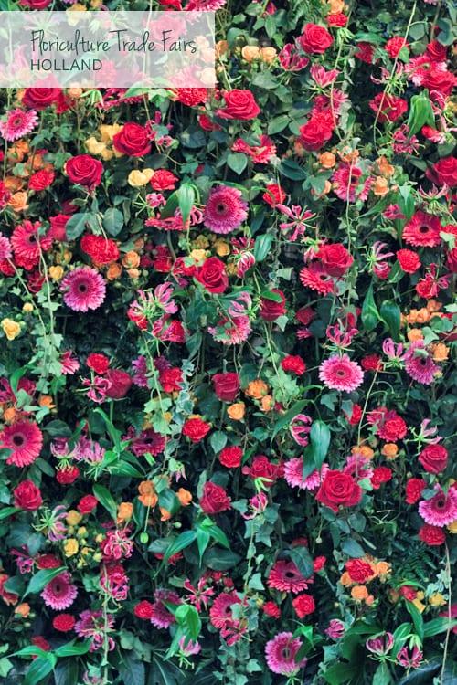Flower-wall-IFTF-Flowerona-1