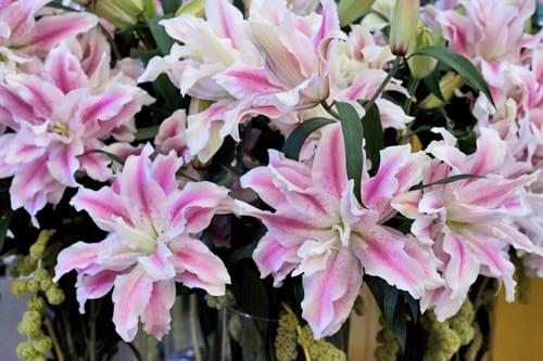 Rose-lilies-IFTF-Flowerona-5