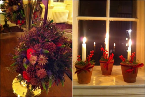 Tallulah-Rose-Royal-Crescent-Christmas-Flowerona-1
