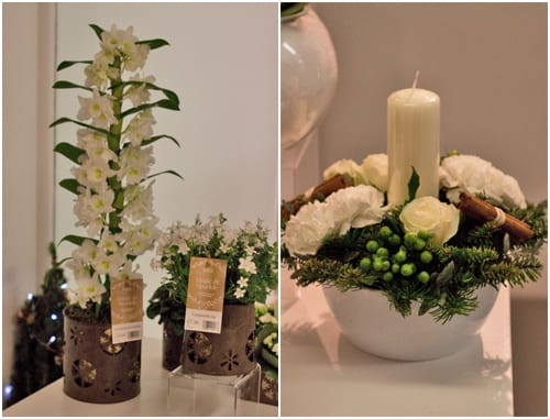 Beautiful white flowers & plants for Christmas 2013 from Marks & Spencer