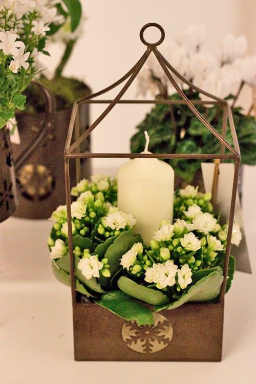 Marks-&-Spencer-Christmas-2013-Flowerona