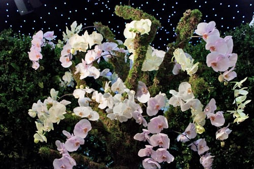 Mary-Jane-Vaughan-Brides-The-Show-Flowerona-4