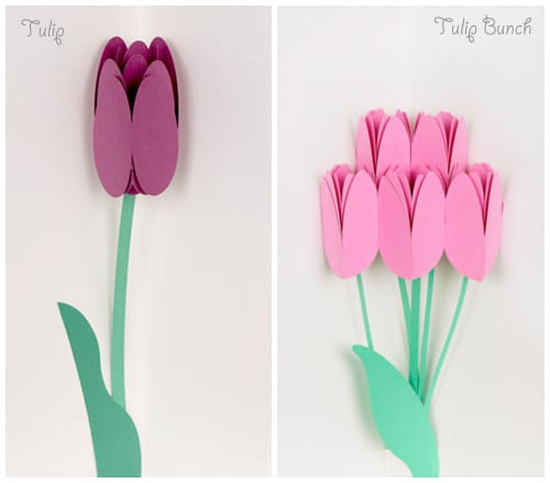 Muji-Flower-Pop-Up-Cards-2
