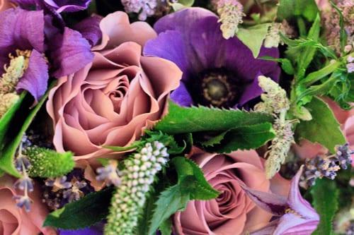 Philippa-Craddock-Flowers-Selfridges-Flowerona-5