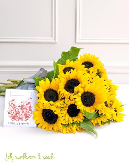 Philippa-Craddock-Flowers-Sunflowers