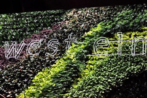 West-Elm-London-Flowerona Living Wall