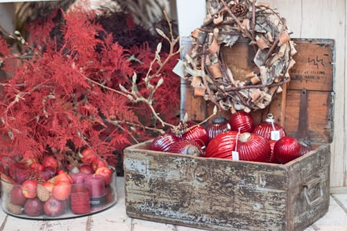 Inside florist Zita Elze's beautiful shop in Kew – Christmas 2013