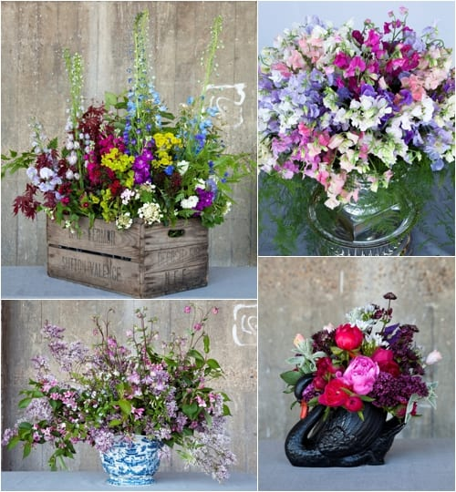 Please 'Buy British Blooms'…and support the British cut flower industry