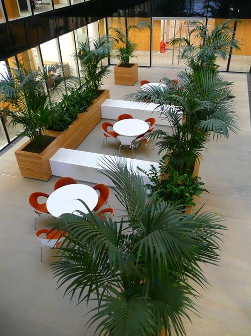 Interview With Ian Drummond, Creative Director Of Indoor Garden