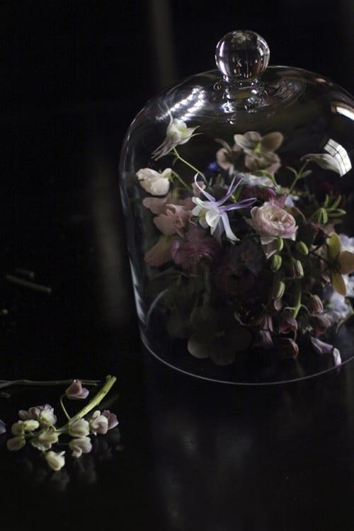Little-Flower-School-sharonspring17