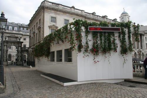 London-Fashion-Week-Box-Office-Garden-Indoor-Garden-Design