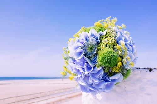 Okishima-&-Simmonds-Flowerona