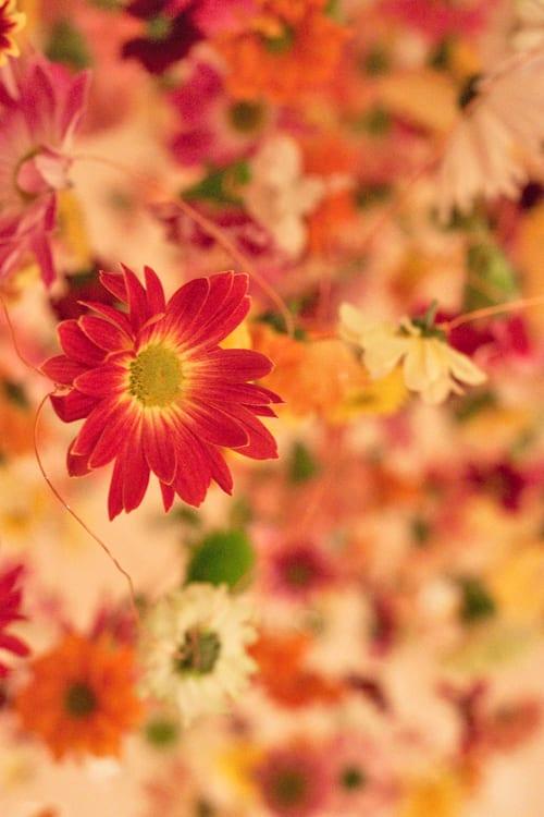 Rebecca-Louise-Law-Floral-Installation-London-Exhibition-Feb-2014-Flowerona-14