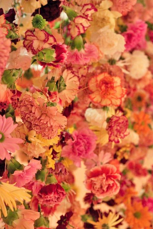 Rebecca-Louise-Law-Floral-Installation-London-Exhibition-Feb-2014-Flowerona-18