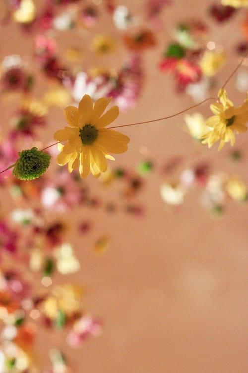 Rebecca-Louise-Law-Floral-Installation-London-Exhibition-Feb-2014-Flowerona-4